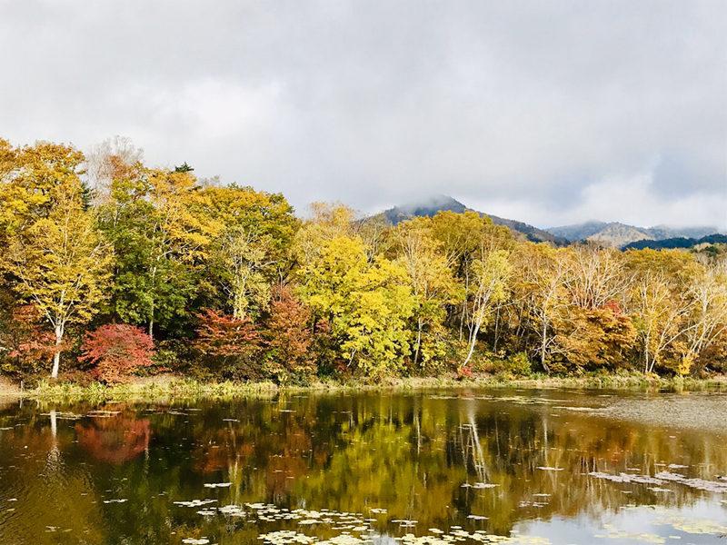 志賀高原の紅葉 2019/10/19 -Autumn leaves-