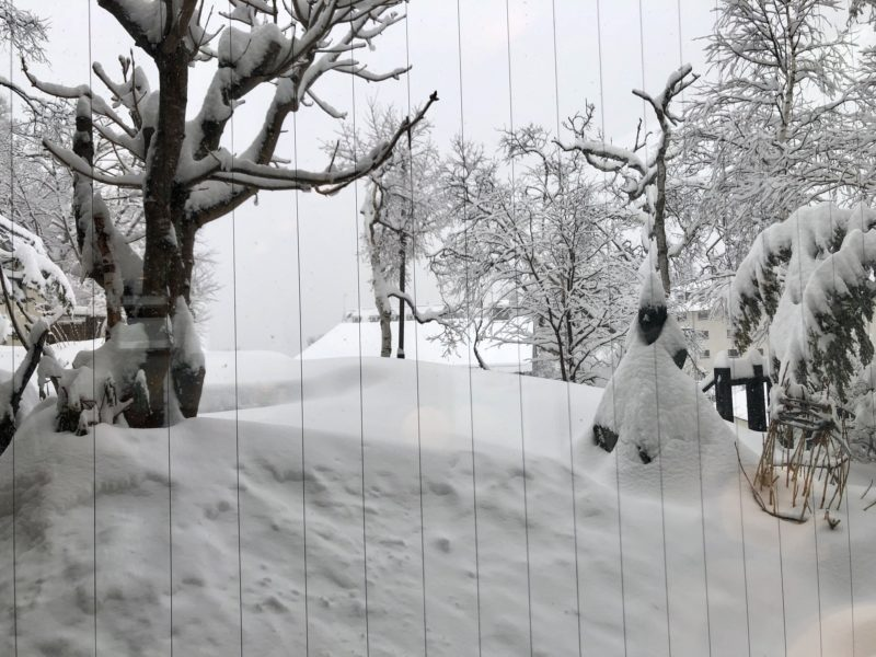 今日の白樺荘前