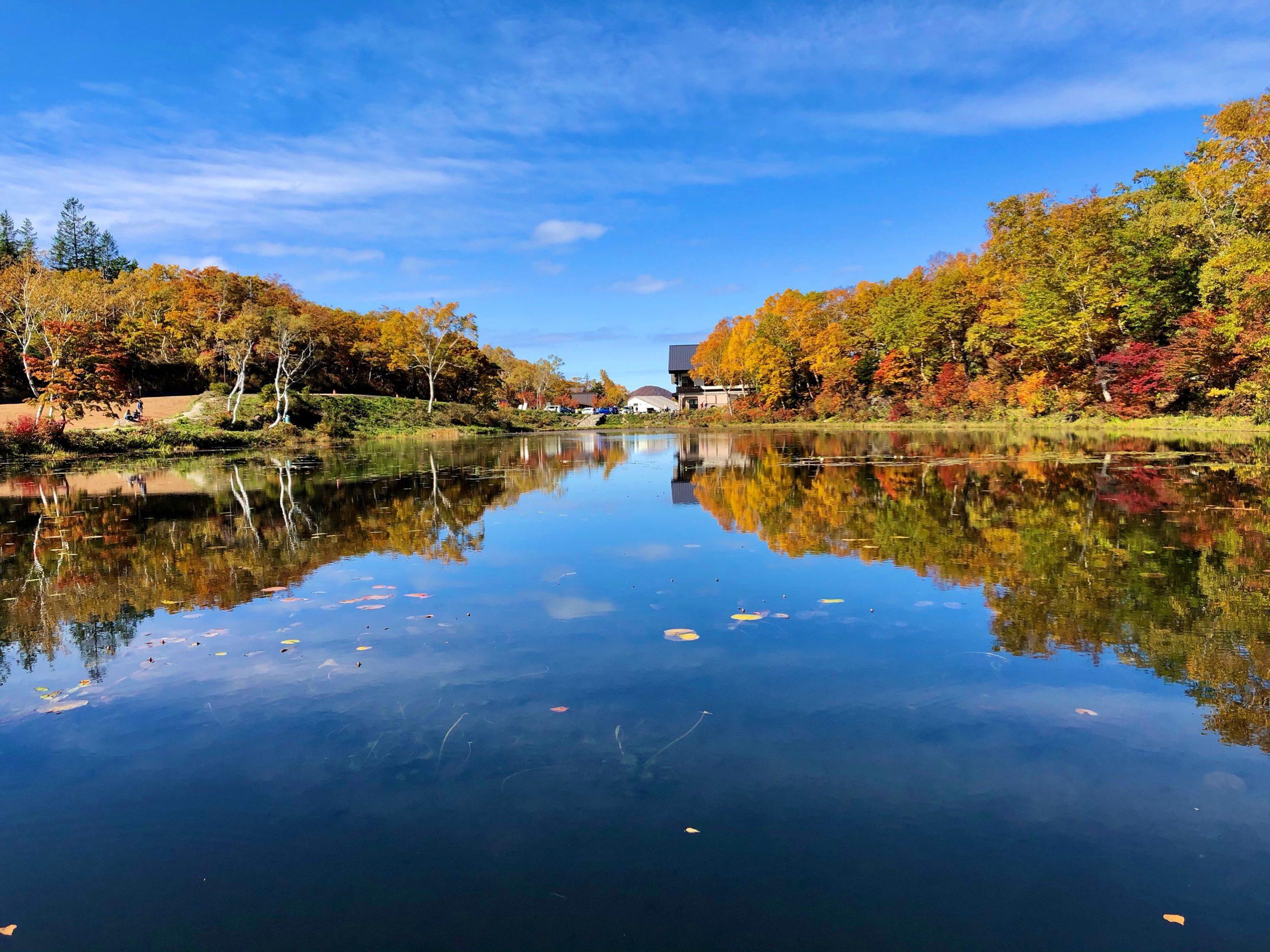 志賀高原の紅葉 2020/10/16-Autumn leaves-