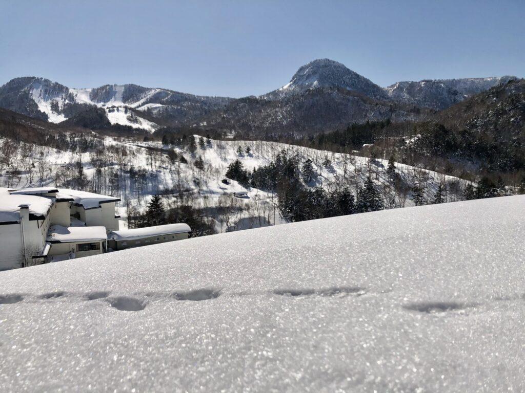 笠岳が見えます