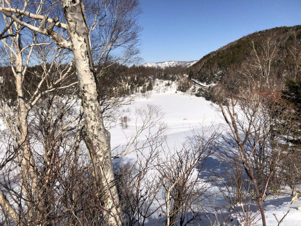 木戸池の山から望む田ノ原湿原
