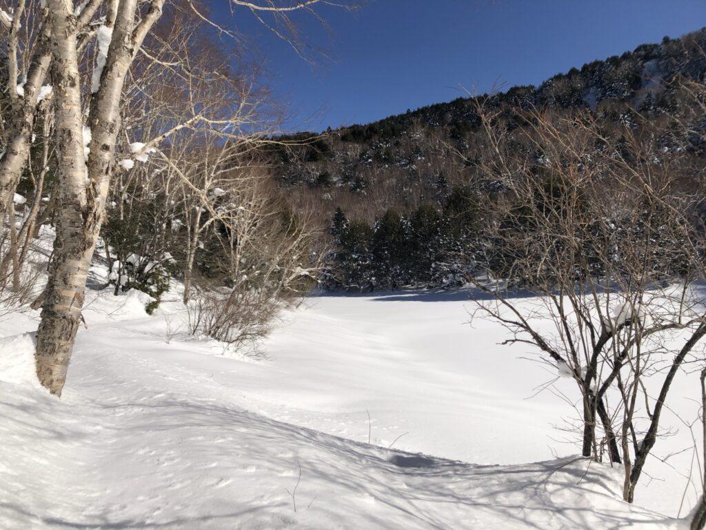 長池の木道